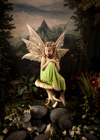 Fairy Ad use